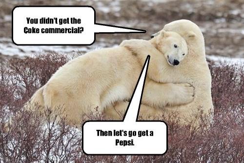 polar bears coke sorry - 8384901888