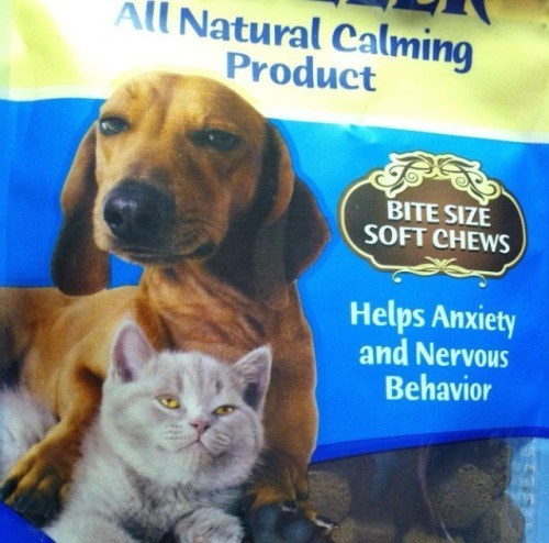 dogs 420 Cats