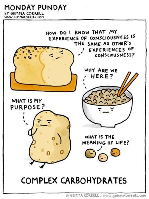 nutrition puns philosophy web comics carbohydrates - 8385221888