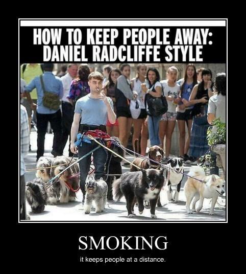 Daniel Radcliffe smoking funny - 8385238784