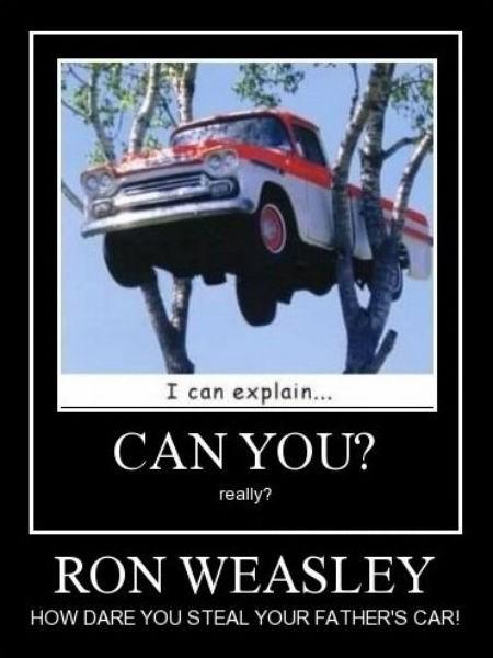 Ron Weasley truck funny - 8385240064