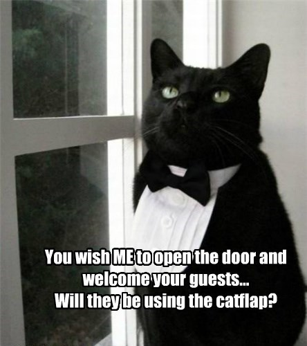 You wish ME to open the door and welcome your guests... Will they be using the catflap?
