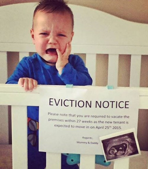 sign,baby,parenting,crib,eviction,pregnant,announcement,crying,g rated