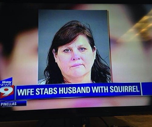 crazy marriage wtf squirrel funny dating - 8385452288