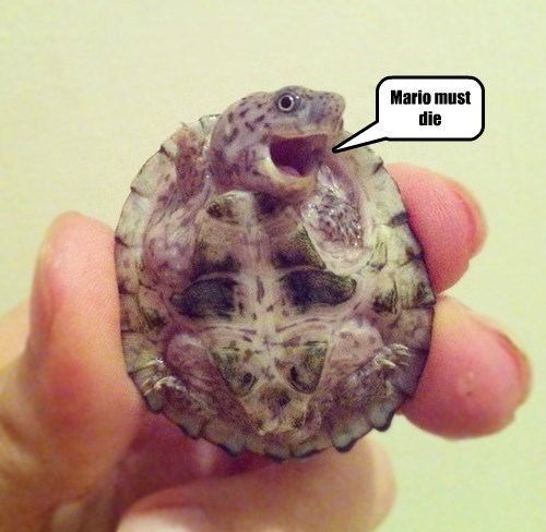 baby animals evil turtle squee mario - 8385722624
