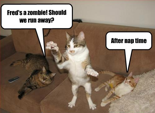 apocalypse napping zombie Cats - 8385850112