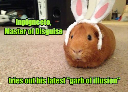 disguise rabbit ears magician guinea pig trick