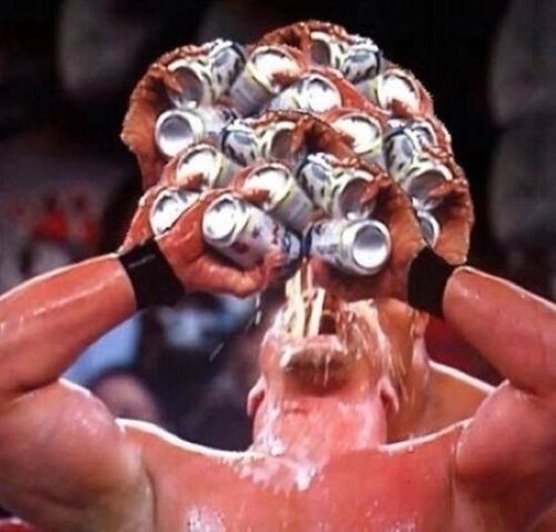 beer alcohol wrestlers - 8386076416