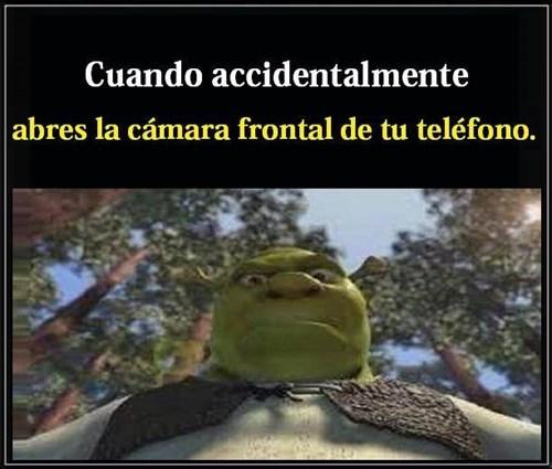bromas Memes - 8386286592