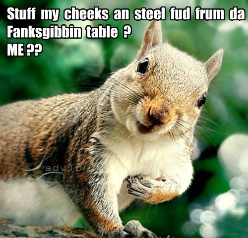 You Must be Nuts