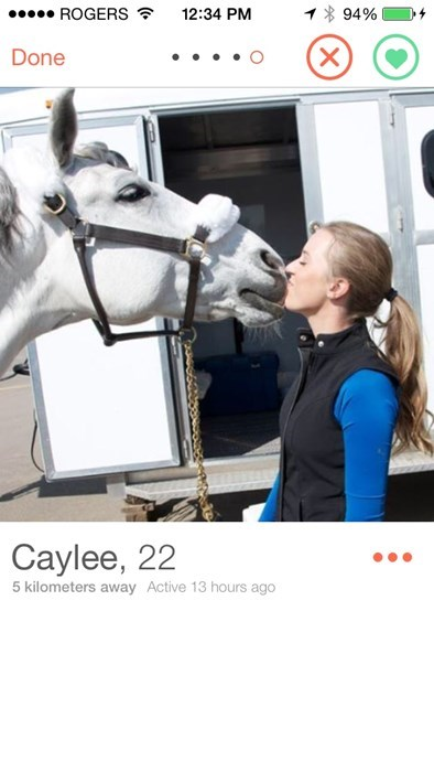 horse,funny,online dating