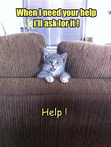 When I need your help i'll ask for it ! Help !