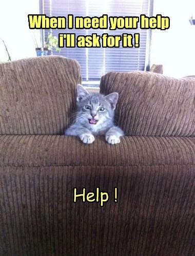 help sofa Cats - 8387634688