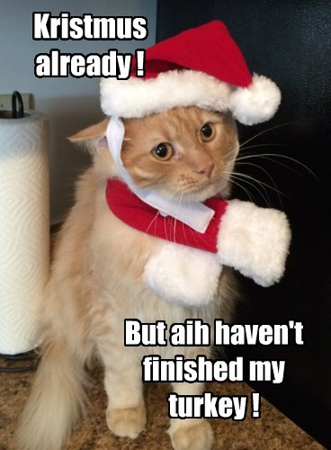 christmas thanksgiving holiday Cats - 8387654912