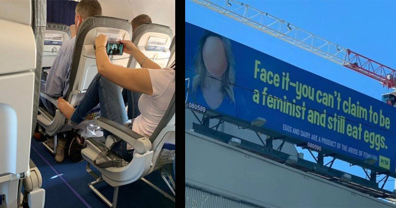 peta sign saying feminists don't eat eggs and person putting their feet on a seat