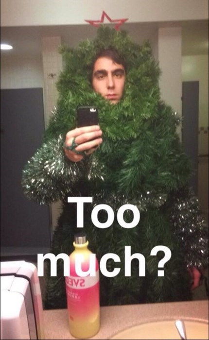 costume,mirror pic,poorly dressed,christmas tree,vodka,selfie