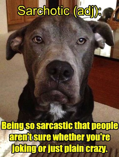 dogs,psycho,dictionary,sarcastic