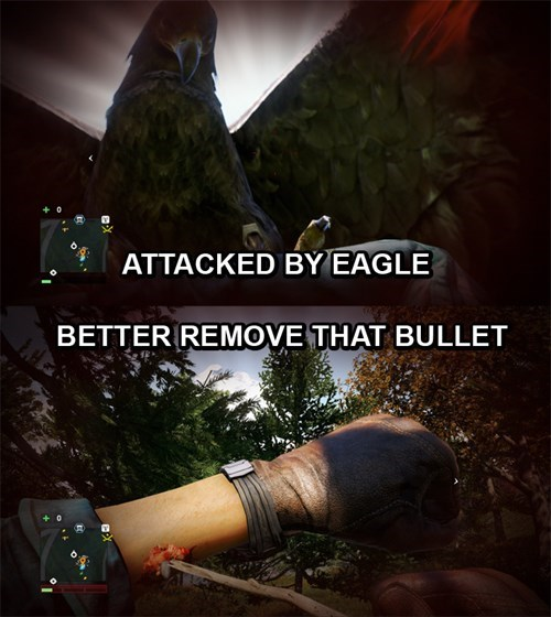 eagles,video game logic,far cry 4