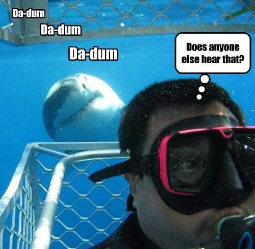 jaws shark dinner - 8390582016