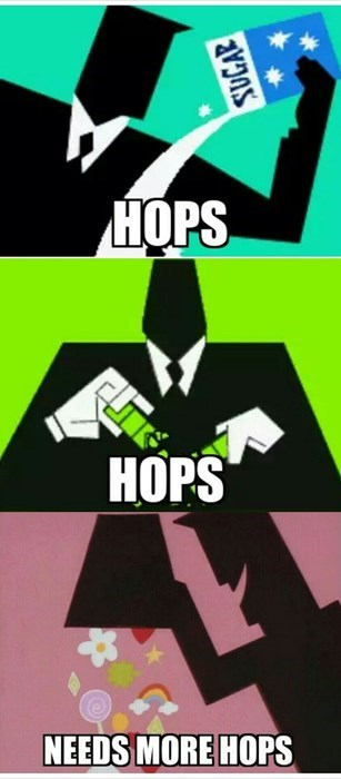 beer hops craft beer funny - 8390595072