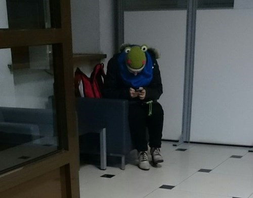 poorly dressed,hat,frog