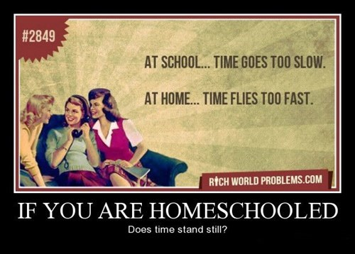 home school idiots funny - 8391030272
