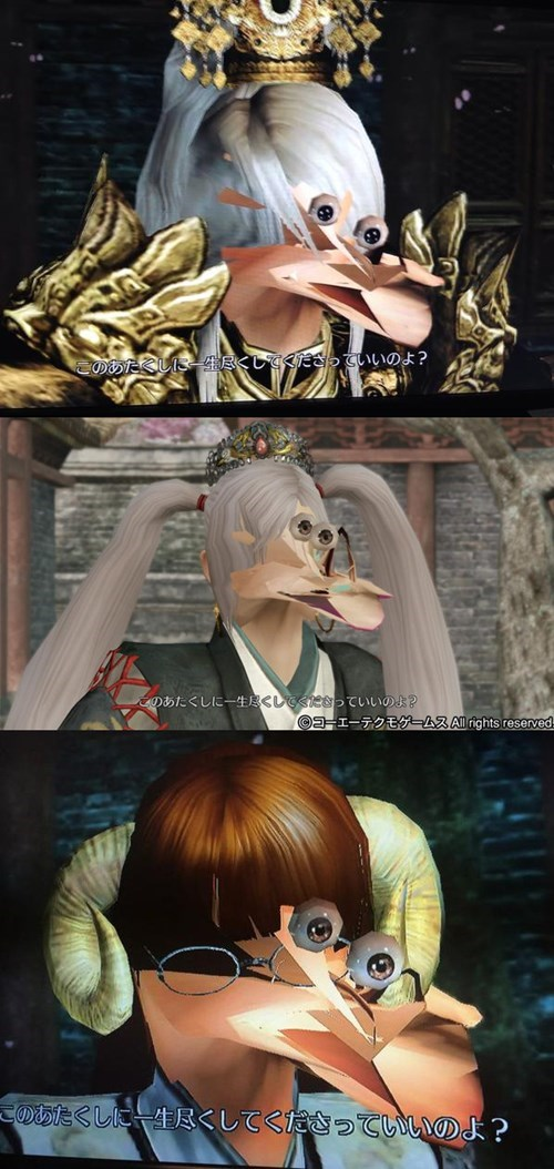 glitches,dynasty warriors,derp
