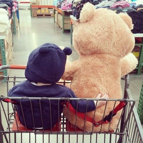 teddy bear,baby,shopping cart,parenting