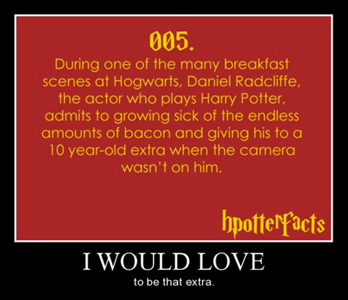 bacon,Harry Potter,magic,funny