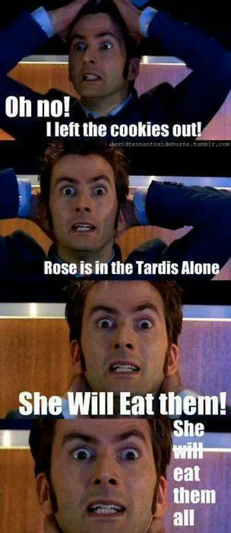 10th doctor,domestic,rose tyler