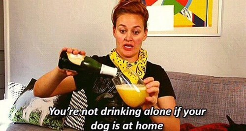 alone,Cats,dogs,drunk