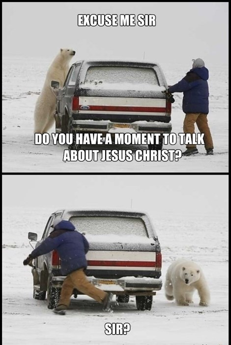 polar bear cars bear oh god why fail nation - 8392256256