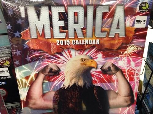 big lots calendars eagles murica - 8392269824