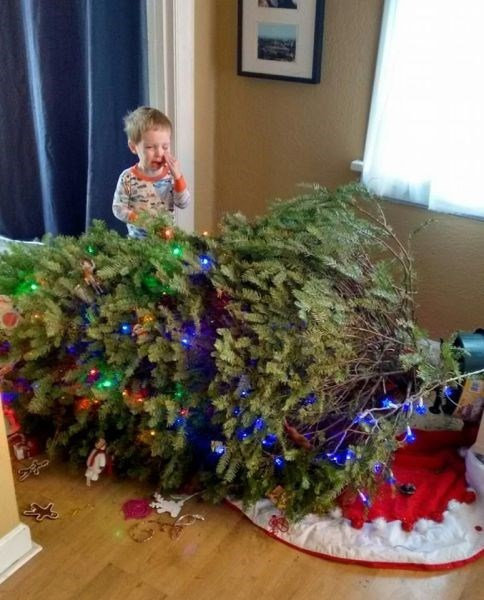 christmas kids christmas tree parenting fell - 8392923904