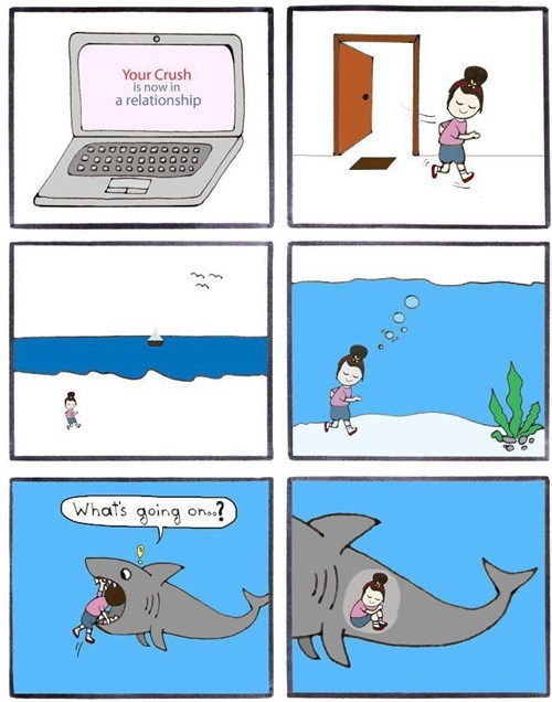 computers,relationships,sharks,dating
