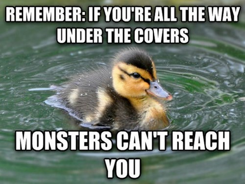blankets,advice animals,Memes,monster