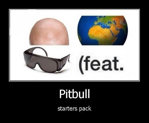 wtf bald pitbull idiots funny earth - 8392974592