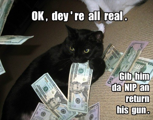 drugs,cash,nip,Cats,black cat
