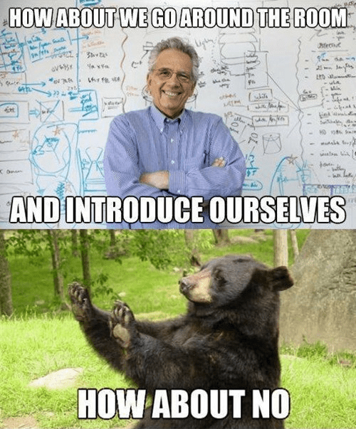 introduction,bear,no,funny