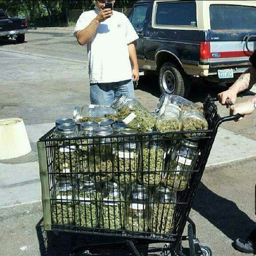 drugs shopping cart weed funny - 8393286400