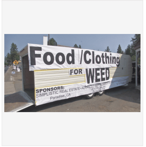 clothing food weed funny