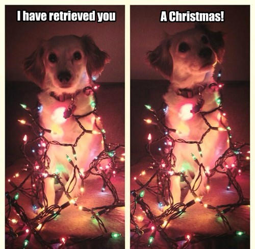 I have retrieved you A Christmas!