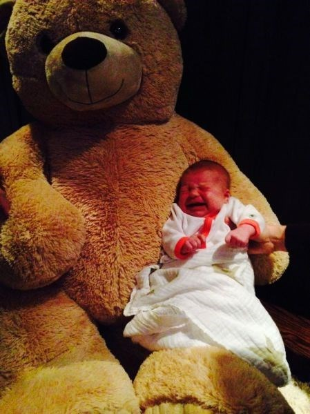 teddy bear baby parenting crying - 8393931264