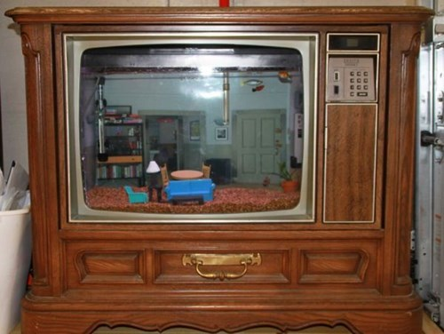 Imagini amuzante si haioase - What\'s the Deal With This Seinfeld Aquarium?