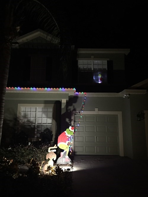 christmas,clever,design,grinch,christmas lights,g rated,win