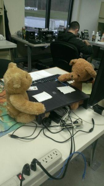 monday thru friday teddy bear - 8394726400