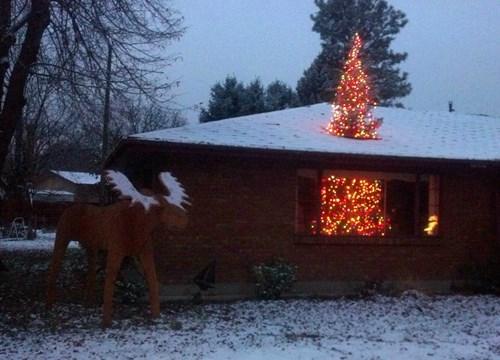 christmas whoops christmas tree - 8395033856