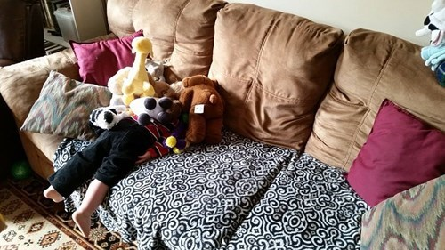 stuffed animal,toddler,hide and seek