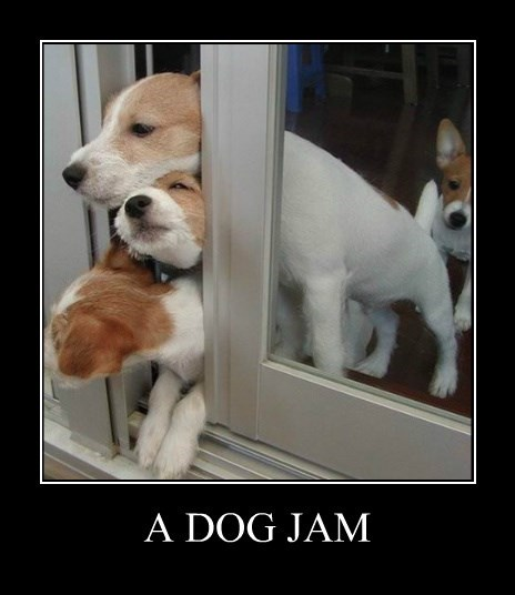 dogs caption jam - 8396075008