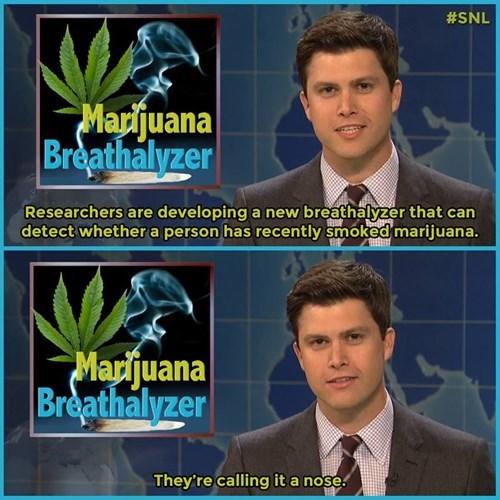 marijuana nose weed funny - 8396446976